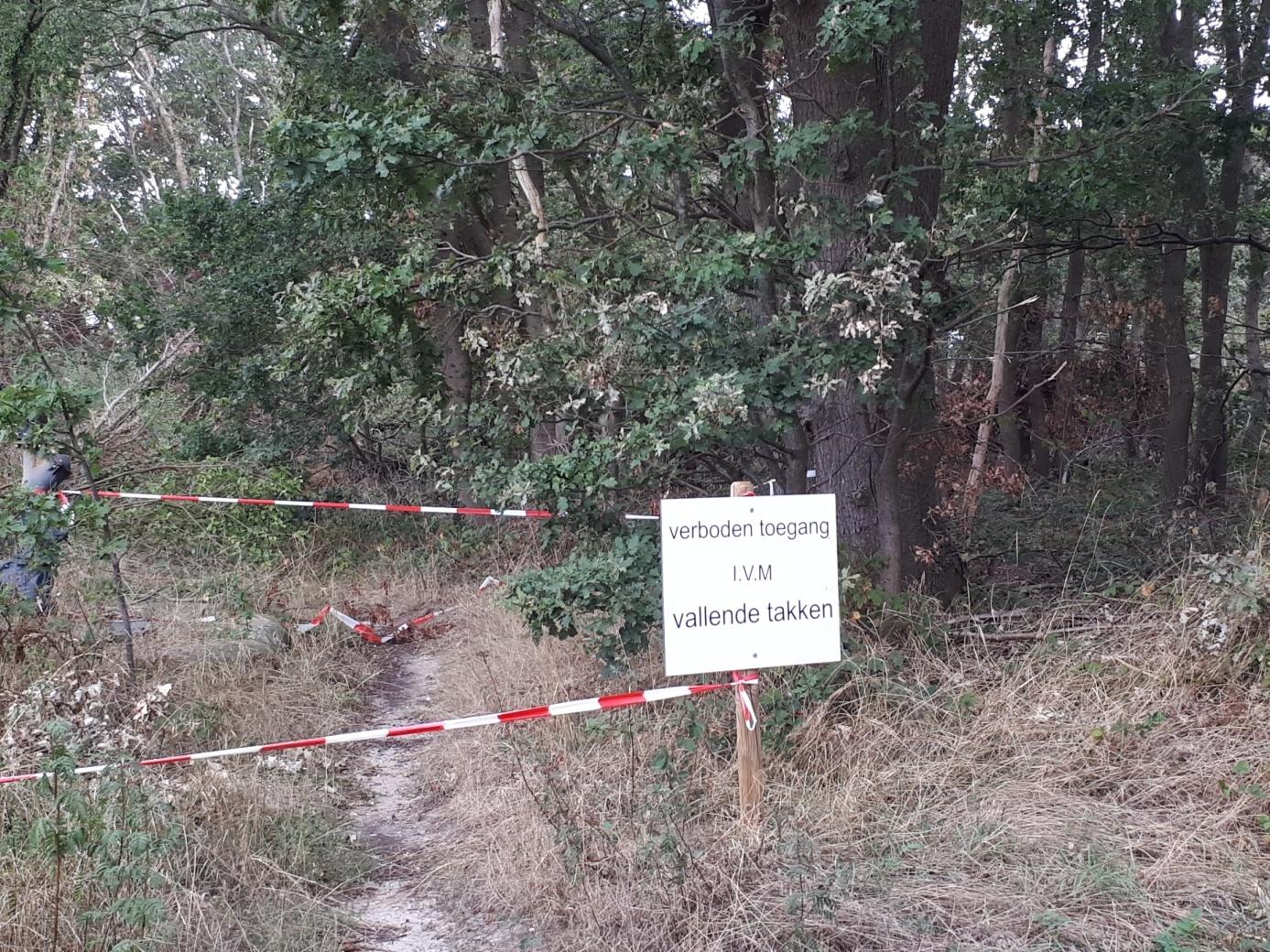 Bosgebied blijft voorlopig verboden gebied voor recreanten